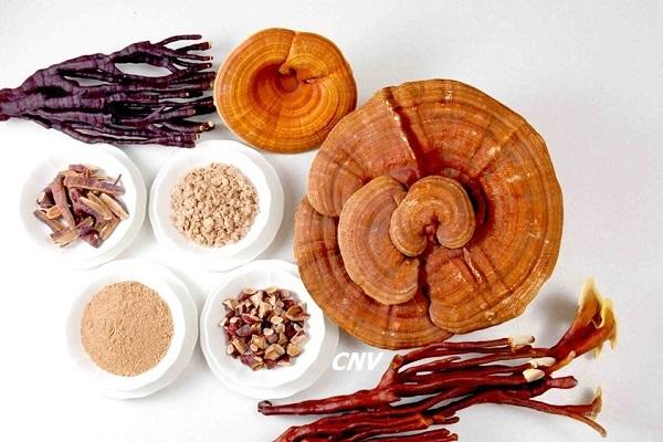 Cách dùng nấm linh chi hiệu quả