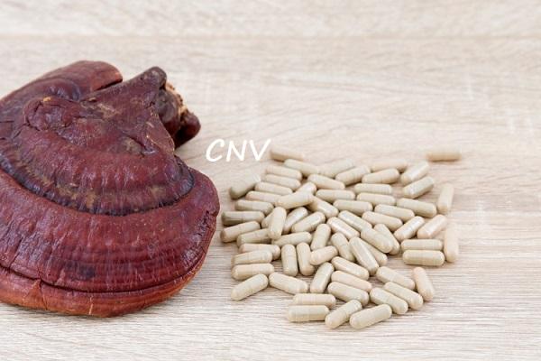 tác dụng chữa bệnh của nấm linh chi