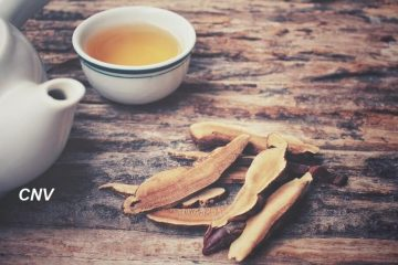 trà nấm linh chi túi lọc hòa tan