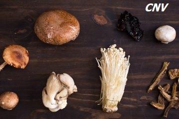 ăn nấm có tác dụng gì